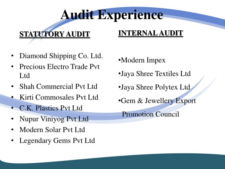 Audit Experience