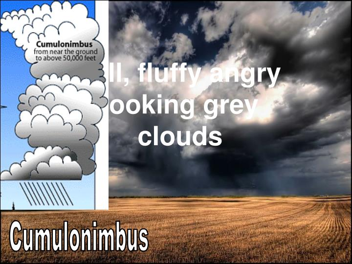 Tall, fluffy angry looking grey clouds