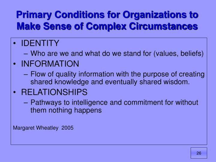 Primary Conditions for Organizations to Make Sense of Complex Circumstances