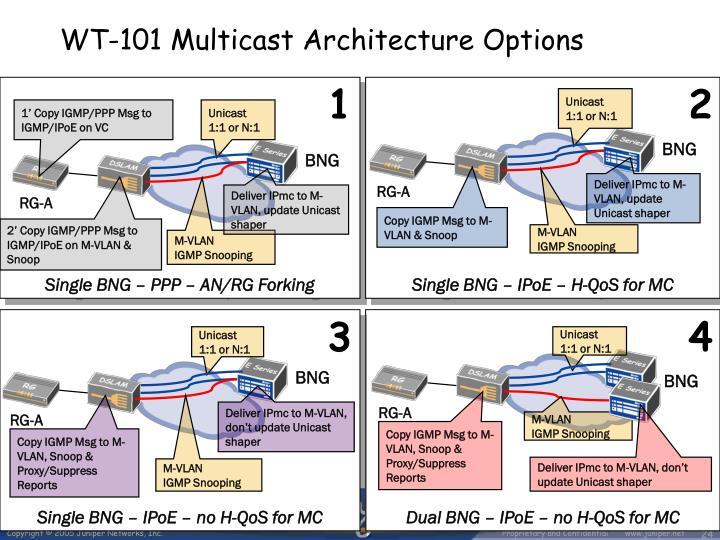 WT-101 Multicast Architecture Options