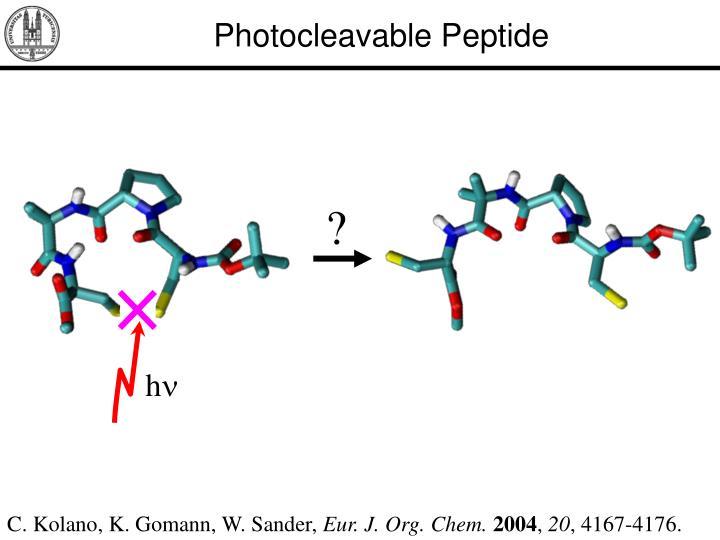Photocleavable Peptide
