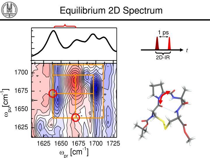 Equilibrium 2D Spectrum