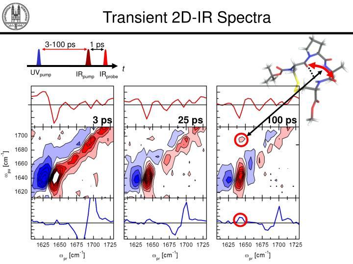 Transient 2D-IR Spectra