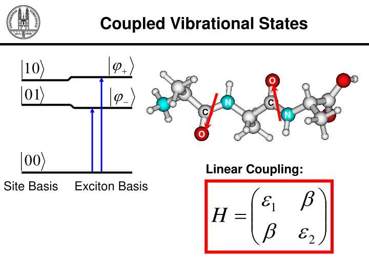 Coupled Vibrational States