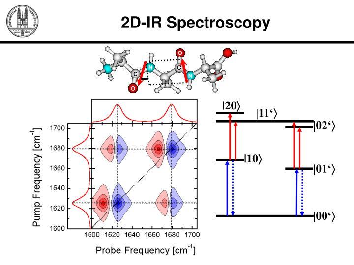 2D-IR Spectroscopy