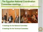 the egyptian national coordination committee meetings