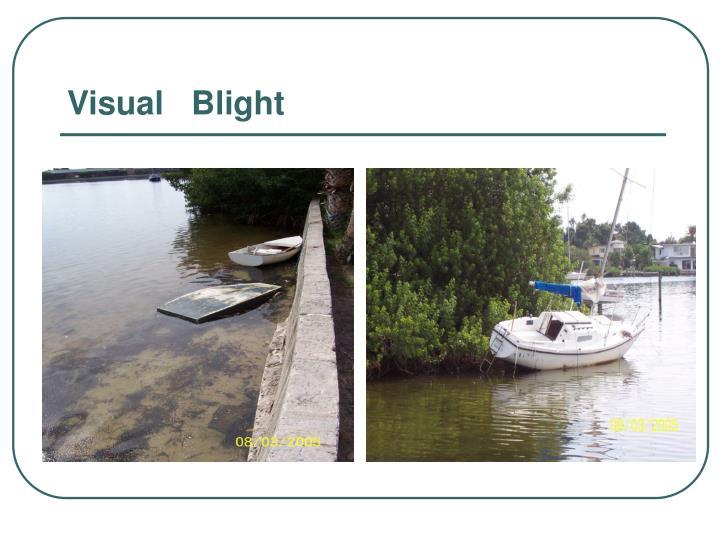 Visual   Blight