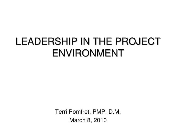 leadership in the project environment n.