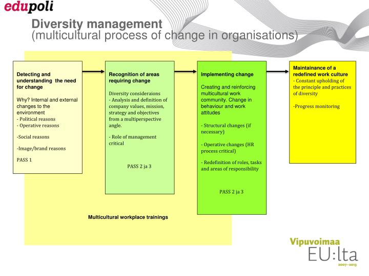 managing multiculturalism diversity in organizations Four approaches to diversity management in the workplace there are various approaches to diversity management approach to managing the business using.