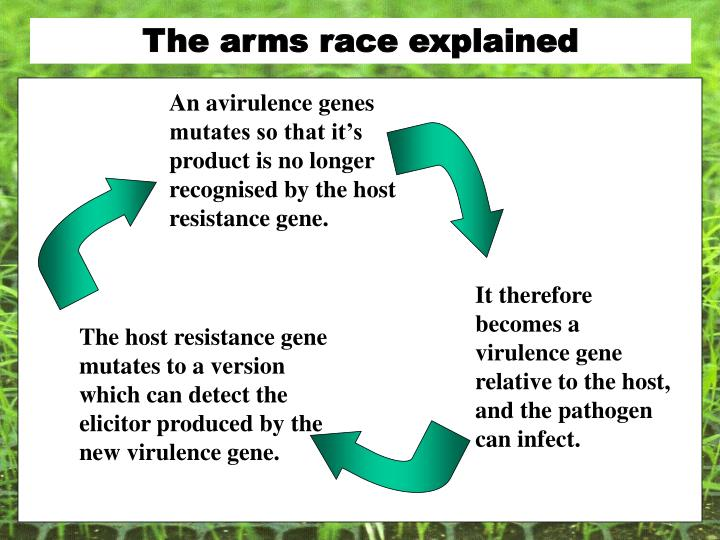 The arms race explained
