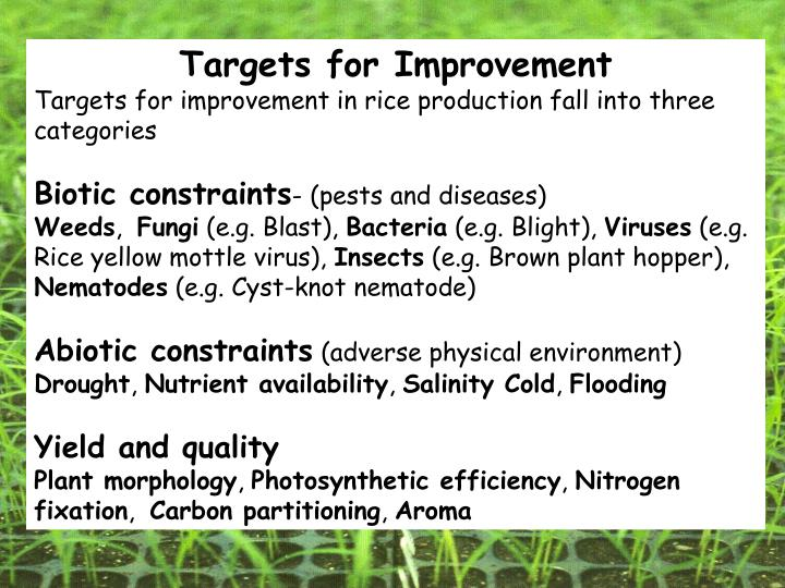 Targets for Improvement