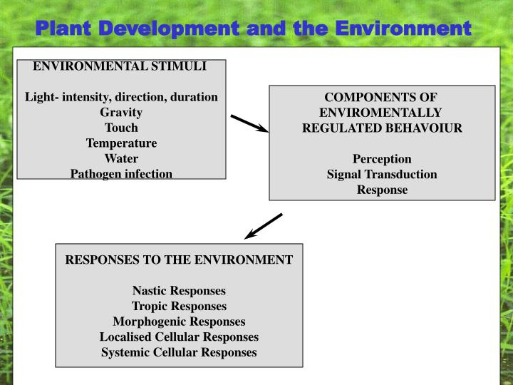 Plant Development and the Environment