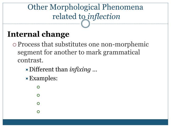 Other Morphological Phenomena