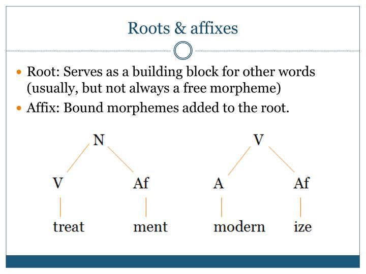 Roots & affixes