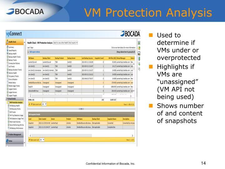 VM Protection Analysis