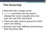 file ownership