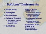 soft law instruments