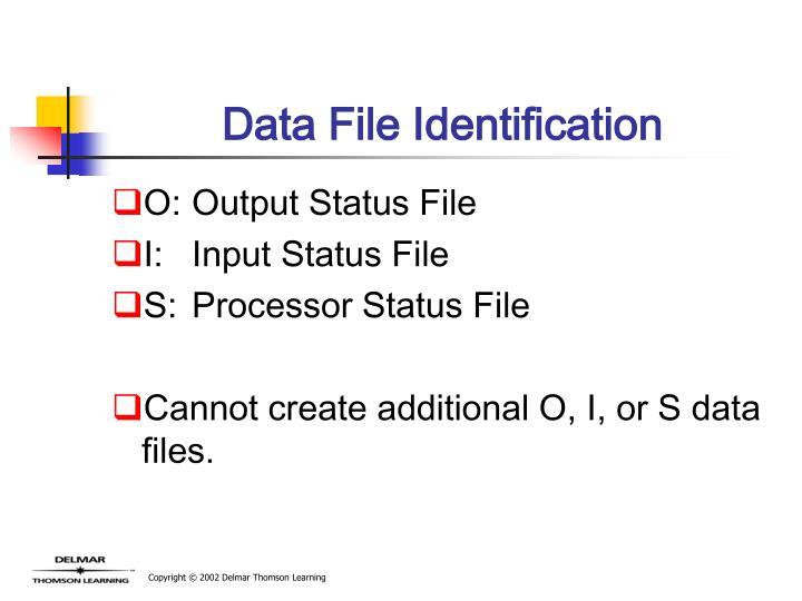 Data File Identification