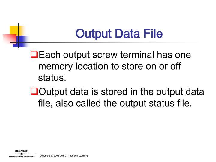 Output Data File
