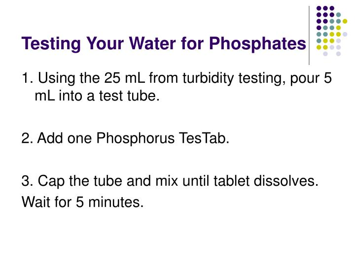 Testing Your Water for Phosphates