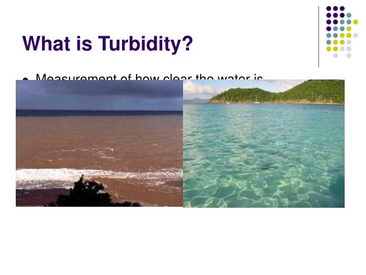 What is turbidity