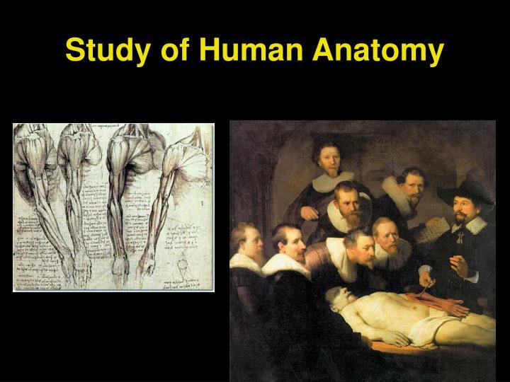 Study of Human Anatomy