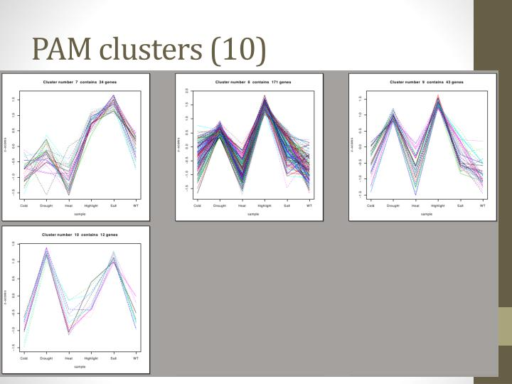 PAM clusters (10)