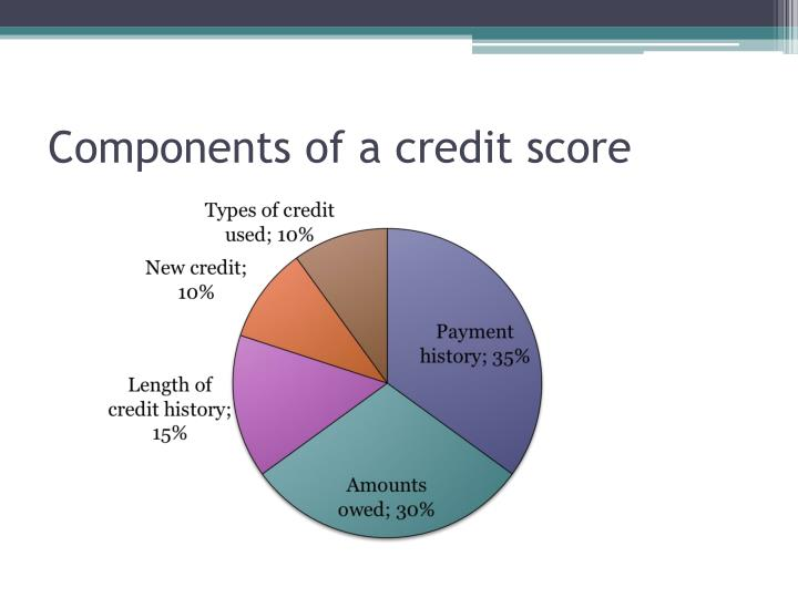 Components of a credit score