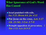 what ignorance of god s word has caused