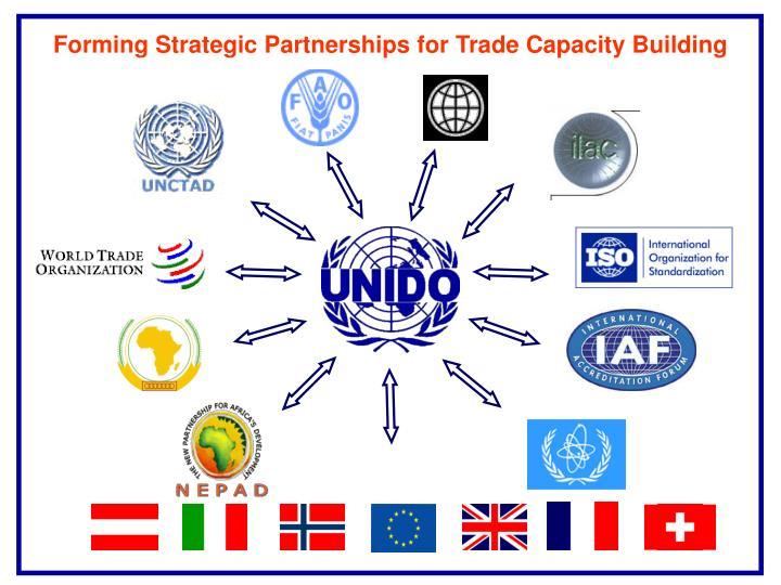 Forming Strategic Partnerships for Trade Capacity Building