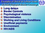 examples of social labour issues at road transport border crossings