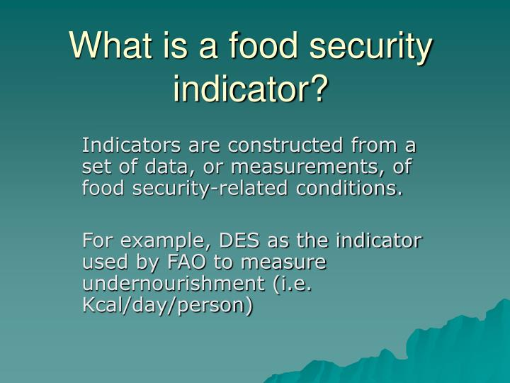 What is a food security indicator?