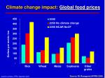 climate change impact global food prices