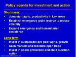 policy agenda for investment and action