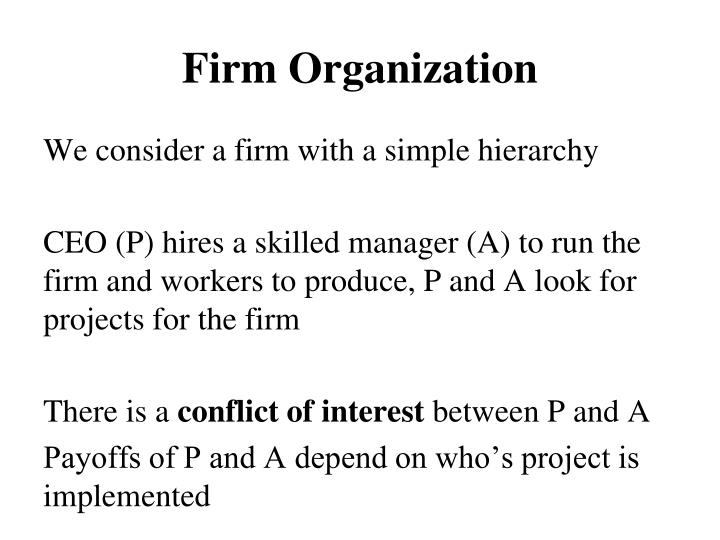Firm Organization