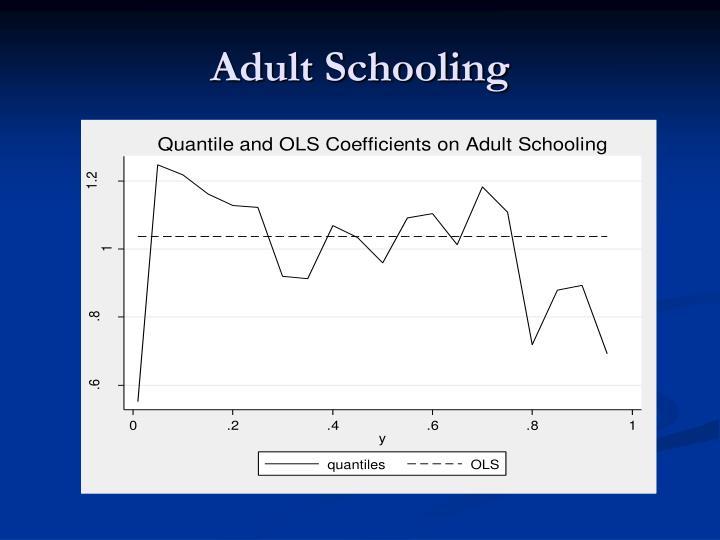 Adult Schooling