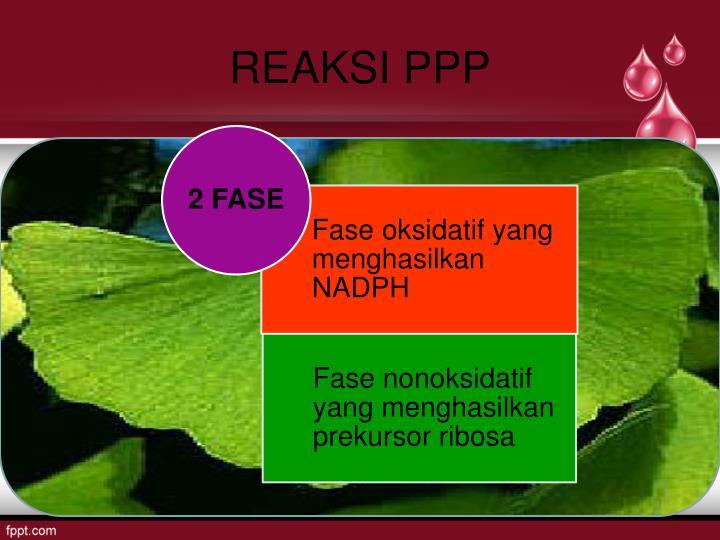 Reaksi ppp