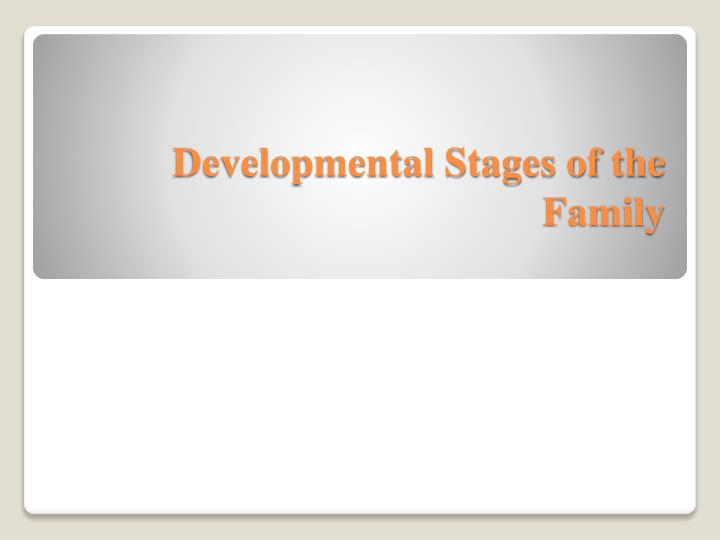 developmental stages of the family n.