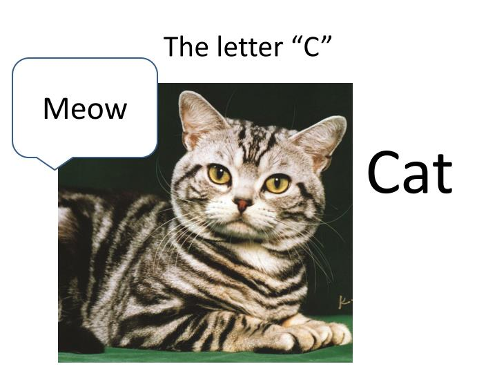 "The letter ""C"""
