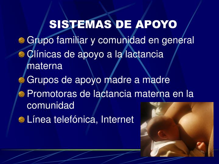 SISTEMAS DE APOYO