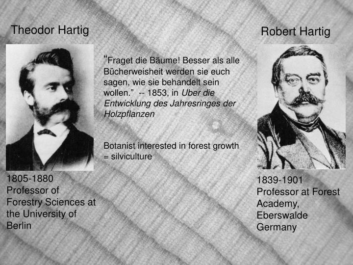 Robert Hartig