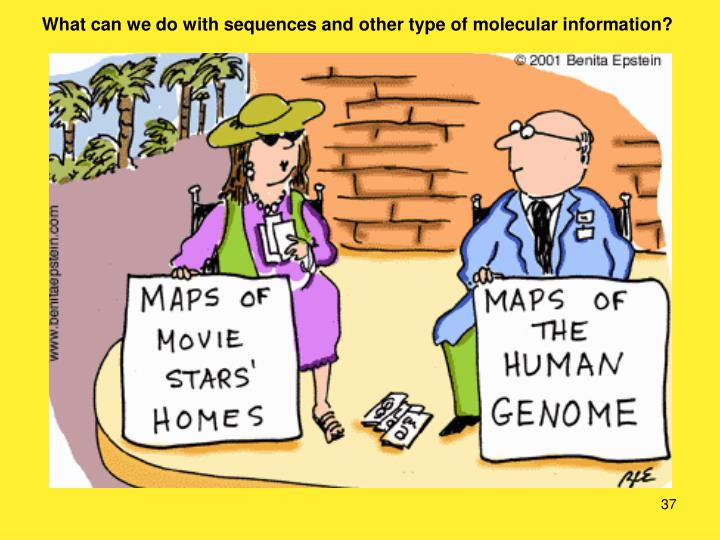 What can we do with sequences and other type of molecular information?