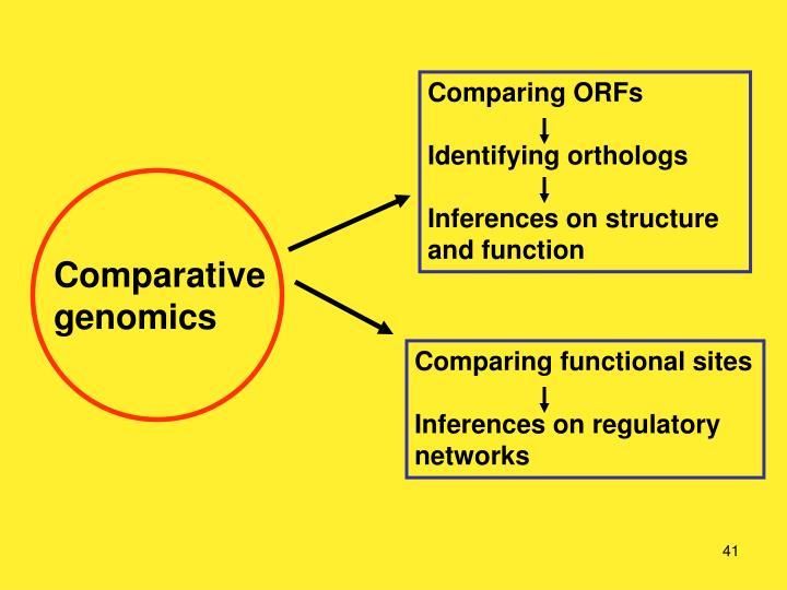 Comparing ORFs