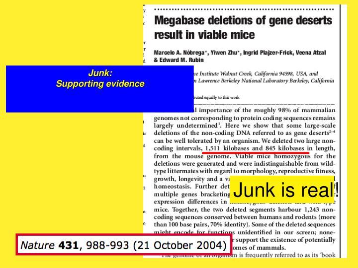 Junk: