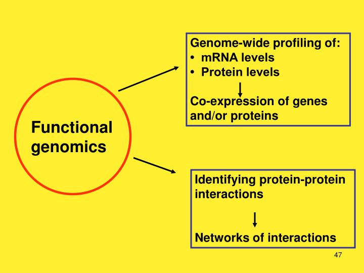 Genome-wide profiling of: