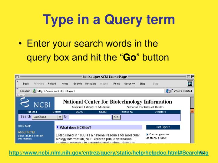 Type in a Query term