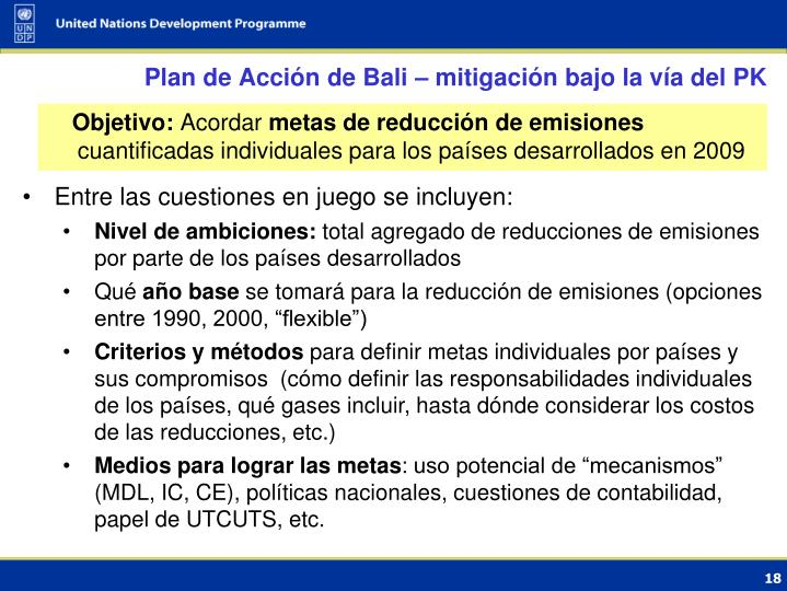 Plan de Acción de Bali – mitigación bajo la vía del PK