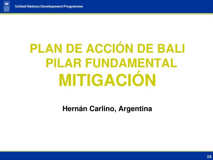 PLAN DE ACCIÓN DE BALI PILAR FUNDAMENTAL
