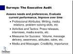 surveys the executive audit1