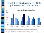 race ethnic distribution of live births by poverty index california 2003